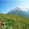 Ratgeber Urlaub in Österreich