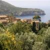 Ratgeber zu Fincahotels auf Mallorca