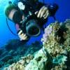 Digitale Unterwasserkamera Kaufberatung