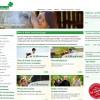 Ratgeber zur Uelzener Pferdeversicherung