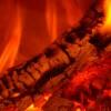 Ratgeber zum Kauf von Stammholz